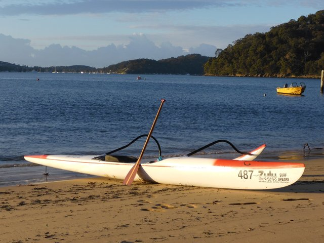pittwater outrigger membership application