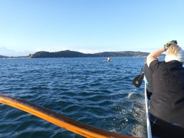 pittwater outriggers training